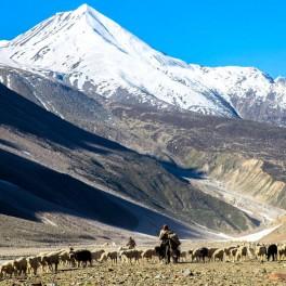 Himachal Himalayas